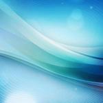 Vierfache Freude: web-netz mit vier Zertifikaten vom BVDW ausgezeichnet