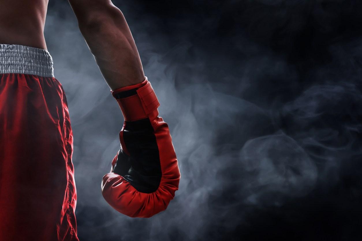 Boxer vor schwarzem Hintergrund