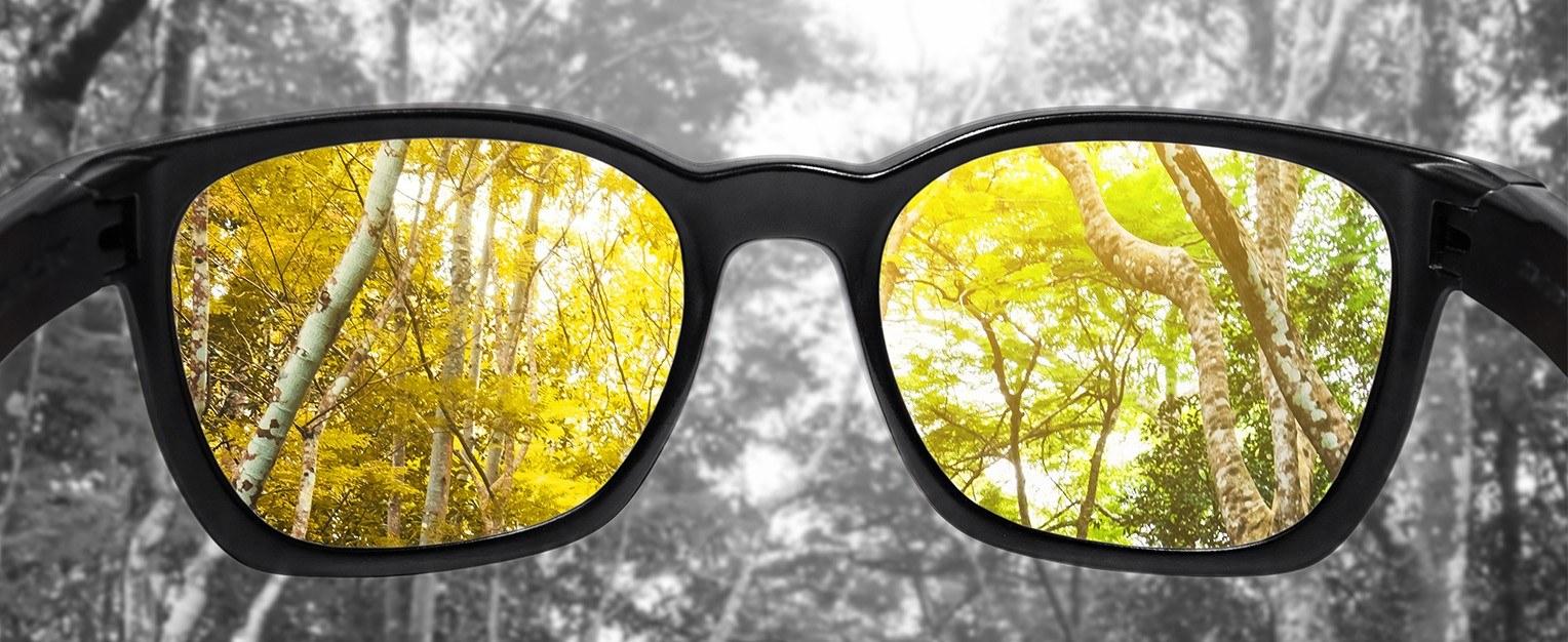 Blick durch eine Sonnenbrille