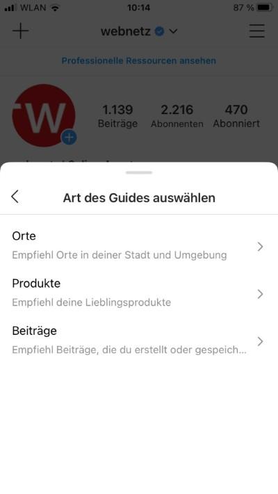 Screenshot webnetz Instagram Art des guides auswählen