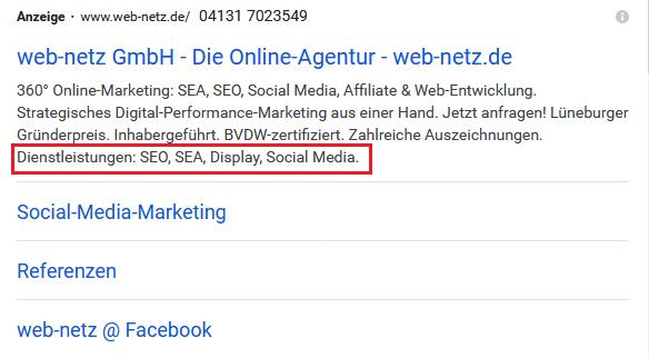 Screenshot Google Ads Snippet-Erweiterung von web-netz.de