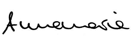 Unterschrift Annemarie