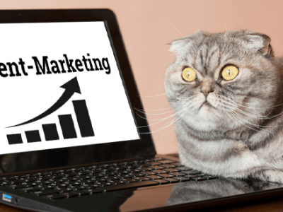 Katze vor Notebook mit Grafik zu Content Marketing