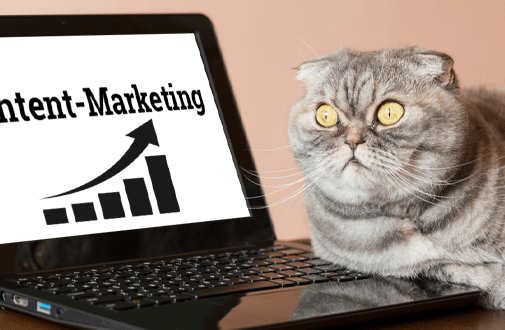 Content-Marketing ist tot – Lang lebe Content-Marketing!