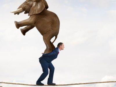 Mann mit Anzug balanciert Elefanten auf Rücken über Seil.