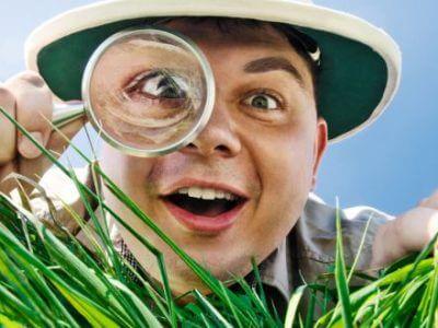 Mann mit Lupe im Gras