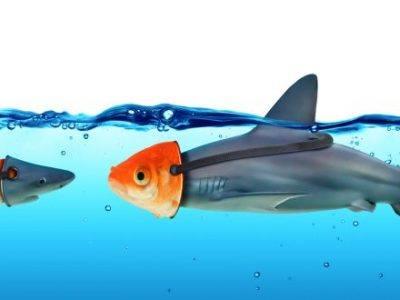 Fische mit Masken