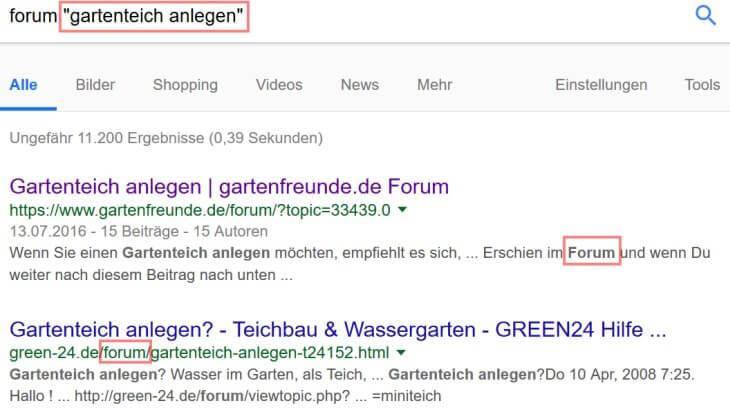 Google Suchoperatoren: Anführungszeichen, 2. Beispiel