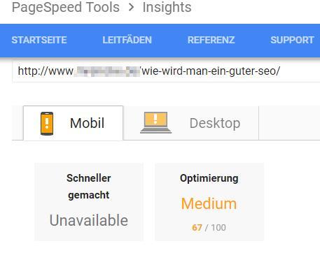 Pagespeed-Test ohne weitere Optimierung