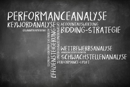 Wortwolke als Tafelbild zum Thema SEA-Audit.
